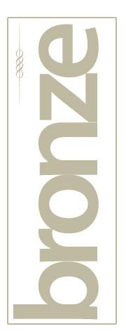 bronze200